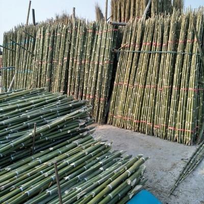 天津蔬菜专用竹竿 竹竿批发