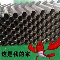 人工养殖小龙虾虾巢鱼巢塑料蜂窝式