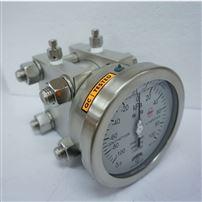 进口差压测量仪表