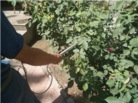 SY-S01植物冠层测量仪(PAR)