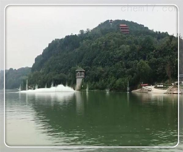 衢州市水下堵漏公司[潜水服务]