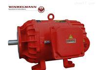 现货WINKELMANN电机