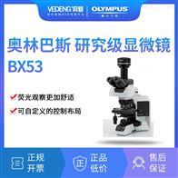 BX53三目OLYMPUS奥林巴斯 研究级显微镜