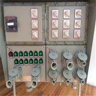 BXX51防爆动力检修箱 电厂防爆箱