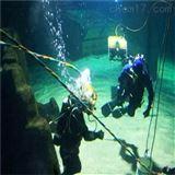 取排水管道水下安裝施工公司-排海沉管安裝