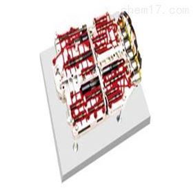 YUY-JP0213电控换档阀体解剖模型