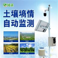 FT-LORA无线远程多层立体土壤墒情监测仪