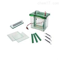 JY-CZ-BL双垂直电泳槽