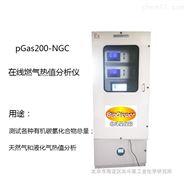 sGas2000-CGC焦爐煤氣標準熱值分析系統