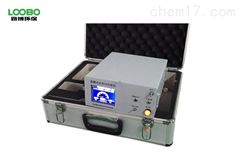 LB-3015F型便携式红外线CO/CO2二合一分析仪