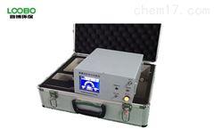 LB-3015A红外一氧化碳分析仪