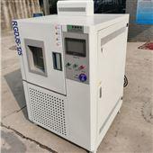 RGDJS-500高低温箱