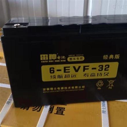 理士雷神6-DZF-20 电动车用铅酸蓄电池