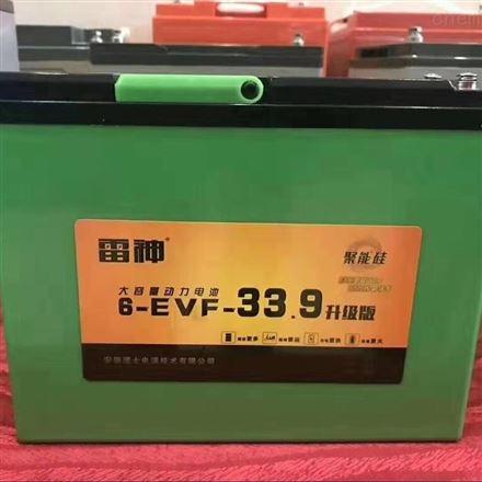 理士雷神6-EVF33.9 电动三轮车用铅酸蓄电池