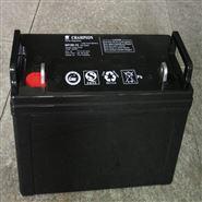 冠军蓄电池NP100-12