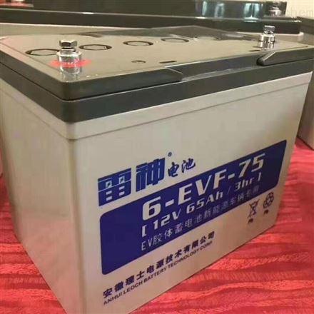 理士雷神6EVF-75 动力蓄电池