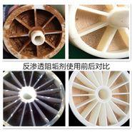 RO膜水处理设备反渗透阻垢剂阻垢分散剂