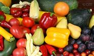绿锦水果蔬菜杀虫剂化学残留物检测