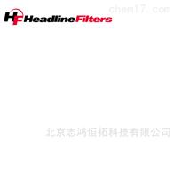 H215-221材质:INCONEL优势供应HEADLINE过滤器 陶瓷滤芯 探枪滤芯