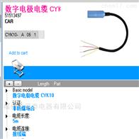 CYK10-S101E+H电极电缆CYK11-AA10AA