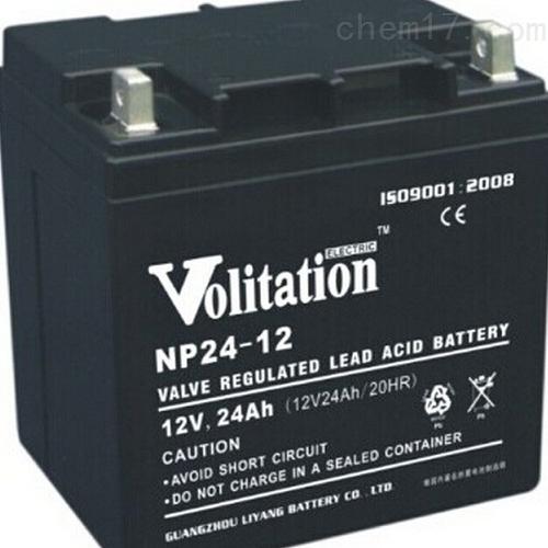 威扬蓄电池NP24-12价格
