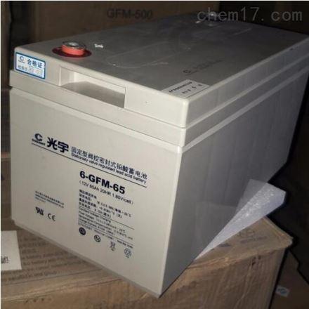 光宇蓄电池6-GFM-65C 12V65AH UPS