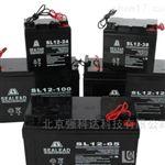 SEALEAD西力达蓄电池SL12-100现货供应
