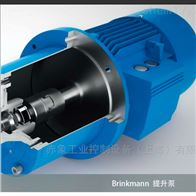 Beswick PR-1R5-L 减压阀