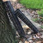 树根观测排水筒