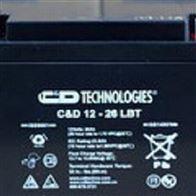 12V24AH大力神蓄电池C D12-24 LBT高级代理商