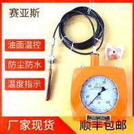 BWY-02温度指示控制仪