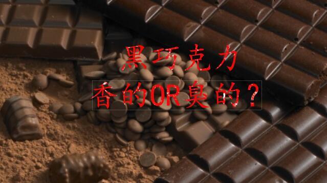 气相色谱为你揭开黑巧克力香气成分的神秘面纱