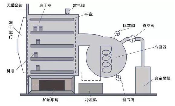 冻干机工作原理(图)