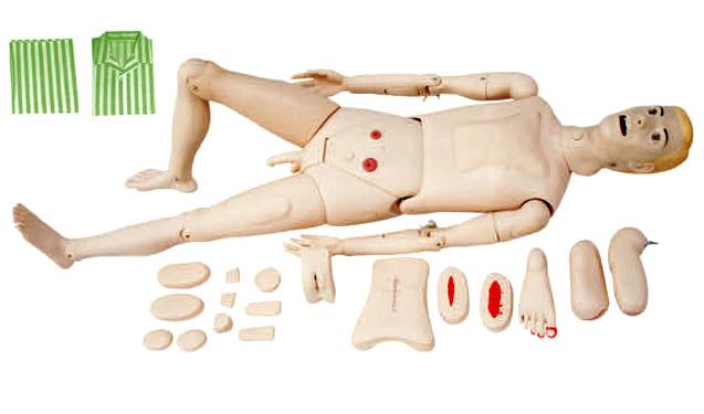 护理人模型