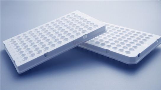 PCR板 本生生物