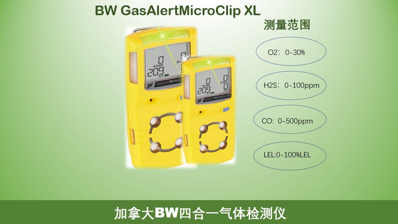 MCXL-4检测仪