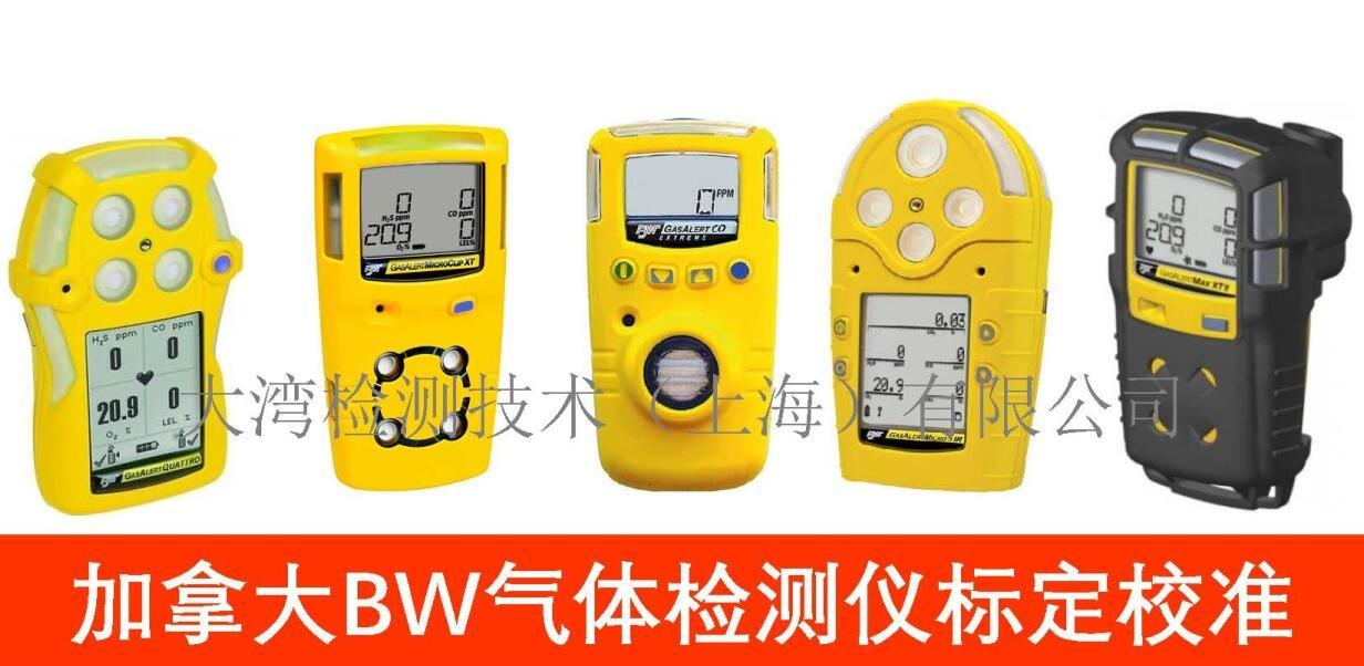 bw气体检测仪标定