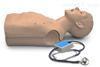成年人心肺听诊模型