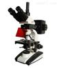 GH/BM-20AY系列北京落射荧光显微镜