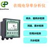 GP電阻率分析儀,原水電導率在線測定儀